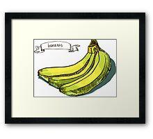 watercolor hand drawn vintage illustration of banana Framed Print
