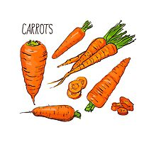 Set simple sketch icons carrots isolated on white background. Vegetables. Food. Hand drawn  by OlgaBerlet