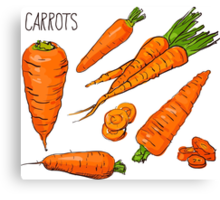 Set simple sketch icons carrots isolated on white background. Vegetables. Food. Hand drawn  Canvas Print