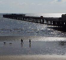 Walton-on-the-Naze Pier - A Silhouette by wiggyofipswich