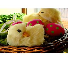 Easter Basket  ^ Photographic Print