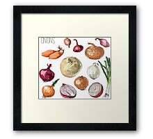 illustration of retro organic Onions set Framed Print