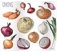 illustration of retro organic Onions set Poster