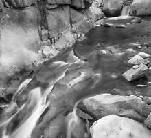 Rocky Mountain Canyon Streaming in Black and White by Bo Insogna