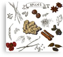 illustration background with hand drawn spices Canvas Print