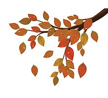 Fall Leaves on Branch Photographic Print