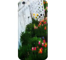Pickett Fence Tulips iPhone Case/Skin