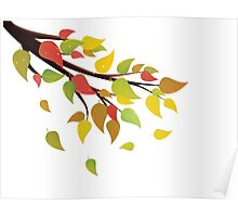 Fall Leaves on Branch 2 Poster