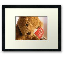 Teddy's Loney Framed Print