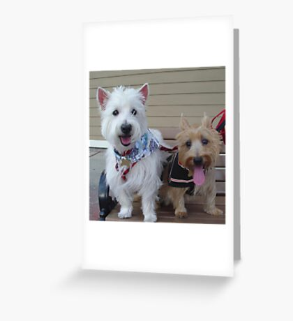 Westie and Cairn Greeting Card
