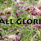 All Glorious Gardens Banner by Marilyn Cornwell