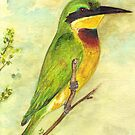 Little bee eater by conniecrayon