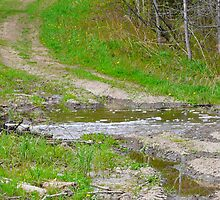 PotHoles on the Upward Path of Life by MaeBelle