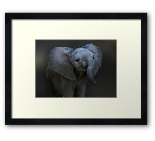DUMBO Framed Print