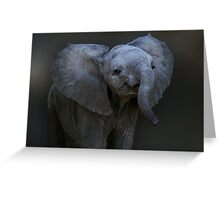 DUMBO Greeting Card