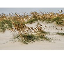 North Carolina Dunes Photographic Print