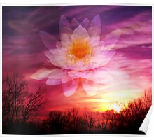Rising Lotus Setting Sun Poster