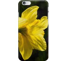 Daffodils - Impressions iPhone Case/Skin