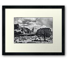 Tree in the Desert Framed Print