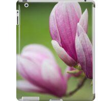 magnolia blooming  on tree iPad Case/Skin
