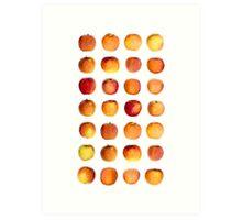 Apple in rows Art Print