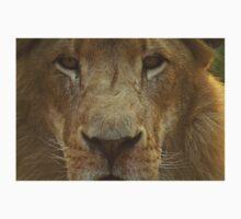 Lion portrait up close Kids Clothes