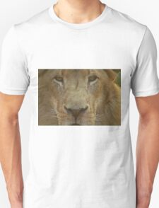 Lion portrait up close Unisex T-Shirt