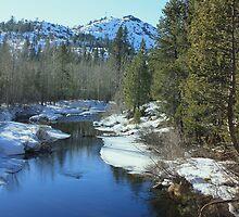 Snowy stream by LindaJBazor