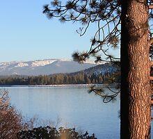 Donner Lake by LindaJBazor