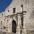 Alamo by Lesley Morgan