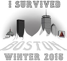 I Survived Boston Winter 2015 (White) by christian-milik