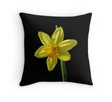 Tete a Tete Throw Pillow