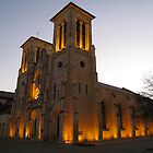 Cathedral of San Fernando by Lesley Morgan