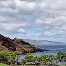 View from Wailea Road #2, Maui, Hawaii by Teresa Zieba