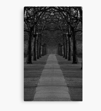 London Trees Canvas Print