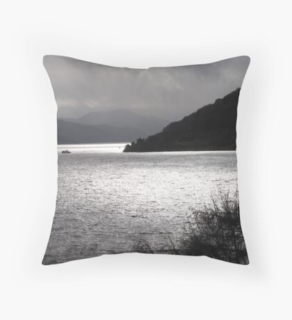 Stormy-Ness Throw Pillow