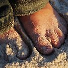 Tiny Toes by Jenny Miller