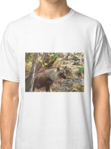 Brown Hyena, South Africa Classic T-Shirt