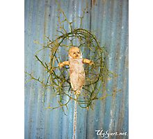 Thorn Cradle Doll Assemblage  Photographic Print
