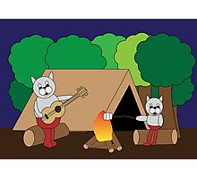 Cats Camping Photographic Print