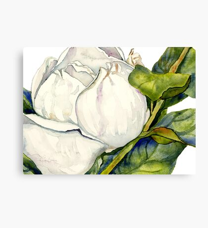 Magnolia Bloom with Leaves Canvas Print