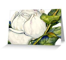 Magnolia Bloom with Leaves Greeting Card