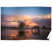 Fire In The Sky - New Forest Poster