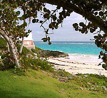 John Smith Bay, Bermuda by triciamary