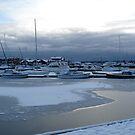 Ice Age - Hibernation by HELUA