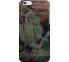 Springs iPhone Case/Skin