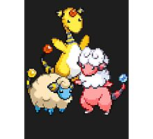 Mareep Evolutions Photographic Print