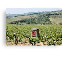 Tuscan Vines Canvas Print