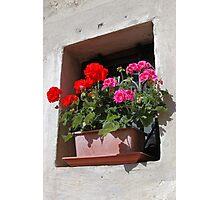Tuscan Windowbox Photographic Print