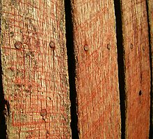 Amish Roughsawn Barnwood by LeeMascarello
